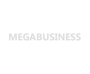 logo megabusiness2